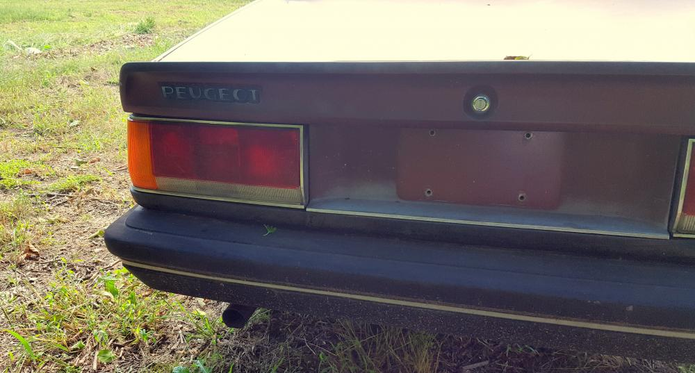 Driver Side Rear Lens and Trunk Lid.jpg