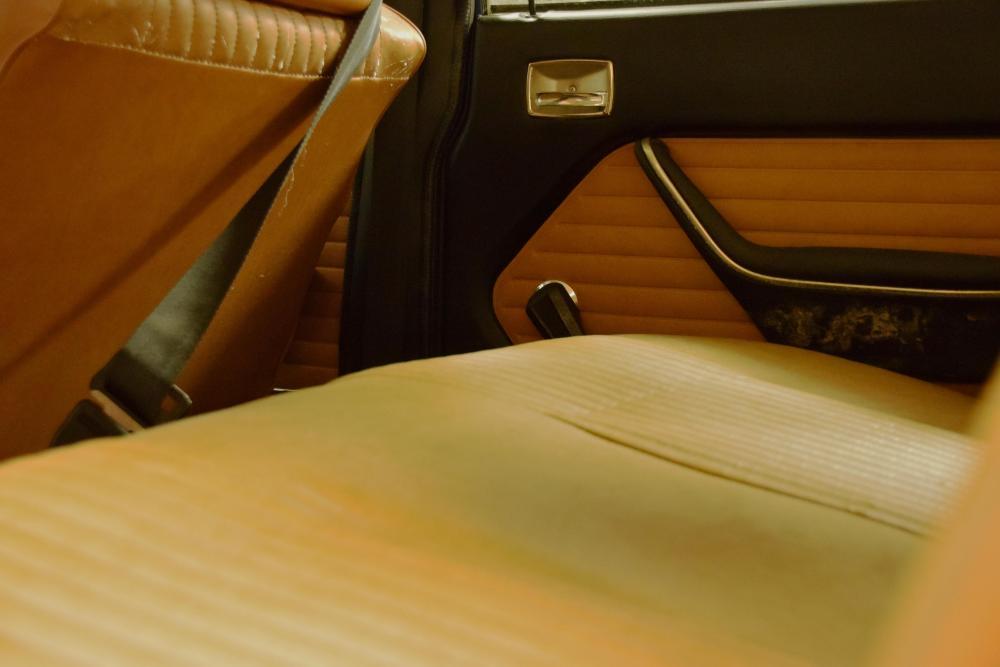 BackseatDoorcard.JPG
